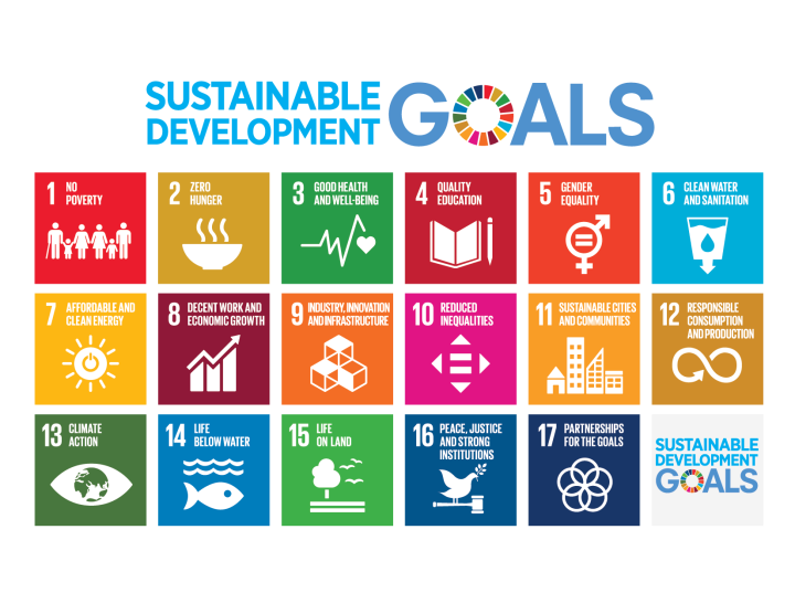 THE UNITED NATIONS' SUSTAINABLE DEVELOPMENT GOALS. HOW DO YOU FITIN?